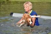 Niet alle honden houden van water dus zullen voor sommige deelnemers van de Dogsuvival iets creatiever de hindernissen moeten nemen.